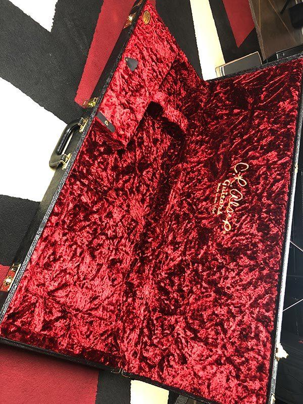 deluxe case inside
